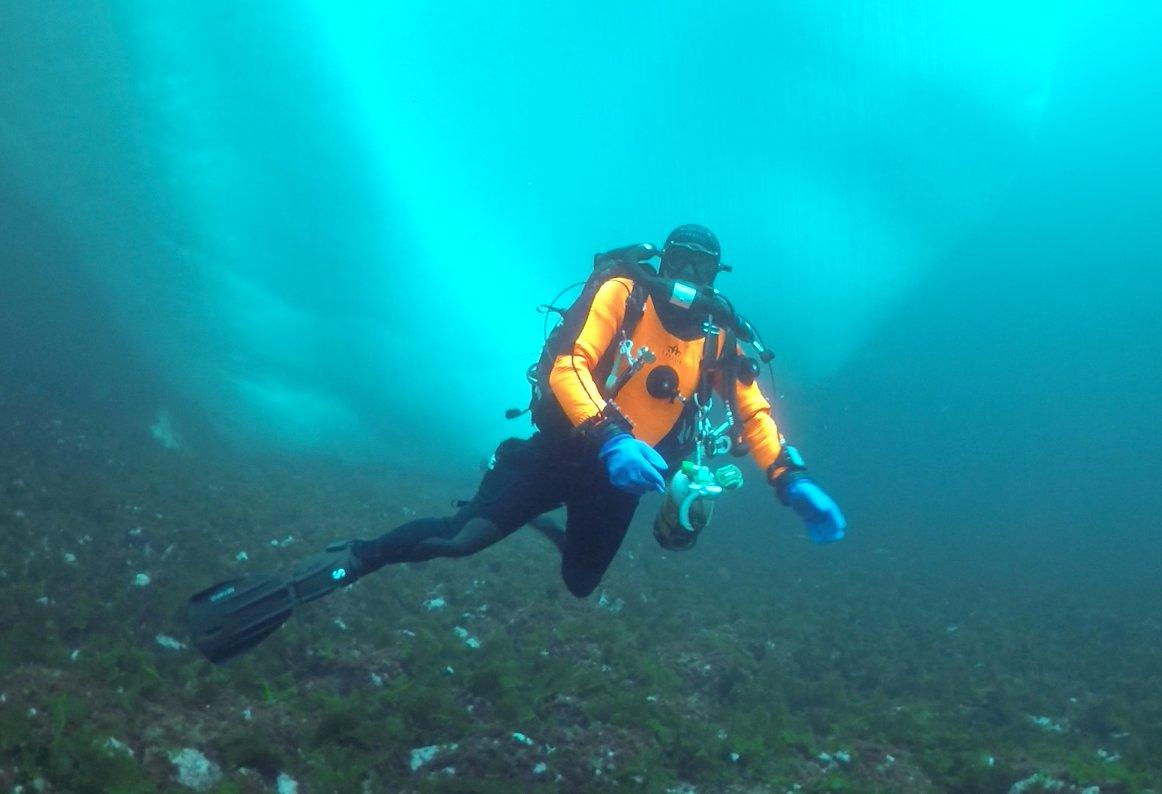 Plongeurs confirmés